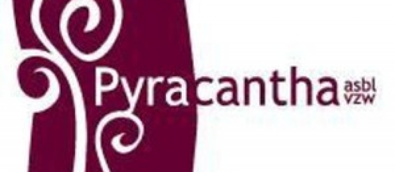 38udv-Logo_Pyracantha